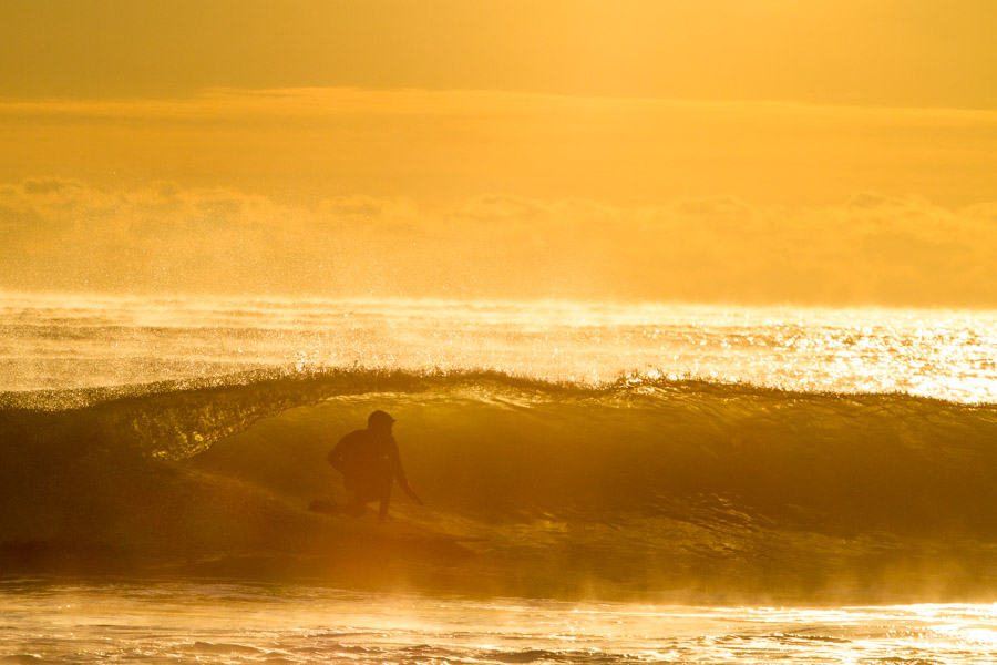 Shawn Zappo packed into a golden smoking bowl. Photo: Christor Lukasiewicz