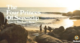 THE FOUR PRINCES OF SERENDIP