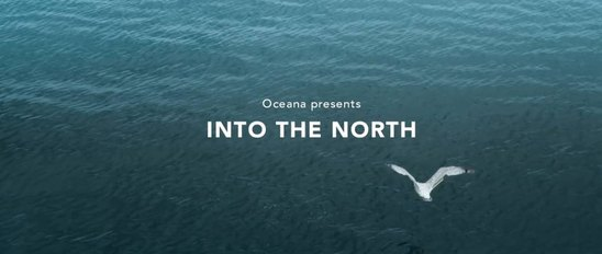 intothenorth